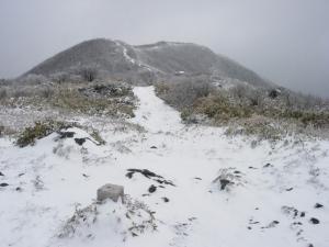 20070311ナギ-三角点→山頂臨む