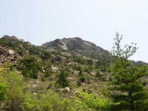 20070527赤石山荘から見た山頂