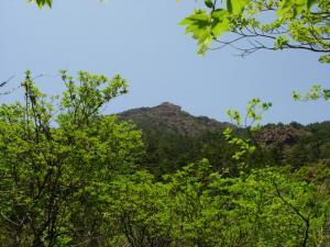 20070527昼食場から見た東赤石山頂