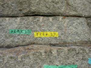 20070623烏帽子岩-黄
