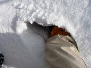 20070212雪面はじめの一歩