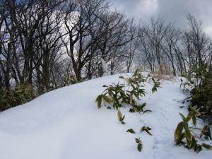 20070212角ヶ仙山頂