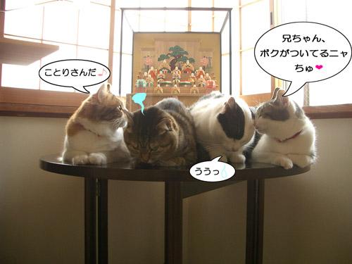 がんばれ集合写真5