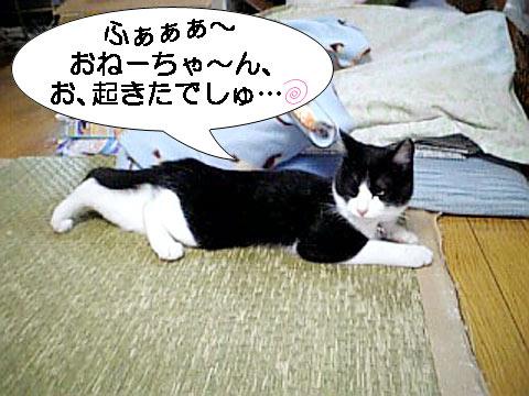 菜々ちゃんお目覚め2