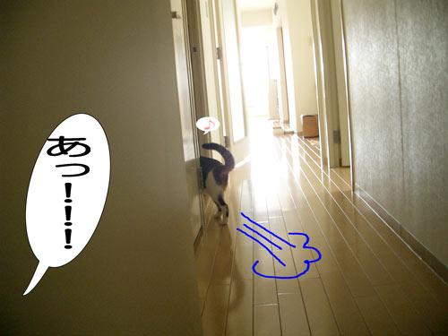 大の逃走7