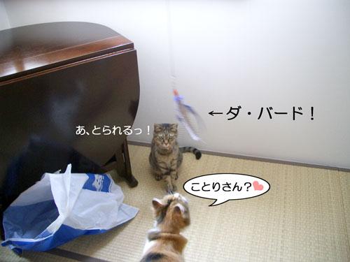 ダ・バード登場1