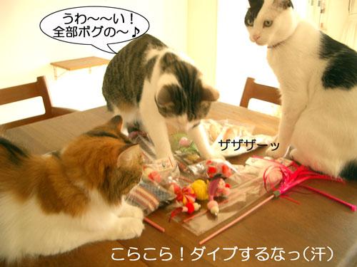 おもちゃおもちゃ4