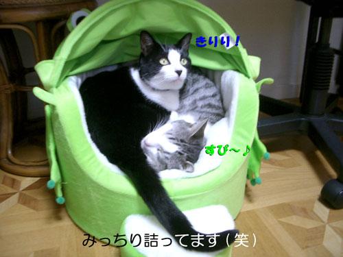 シゲ&マサ君団子8