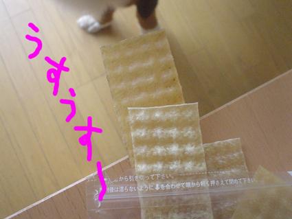 20071002104145.jpg