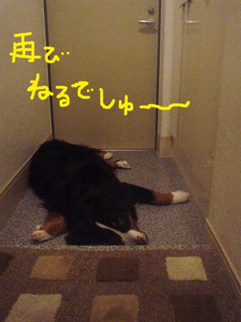 berudeshi.jpg