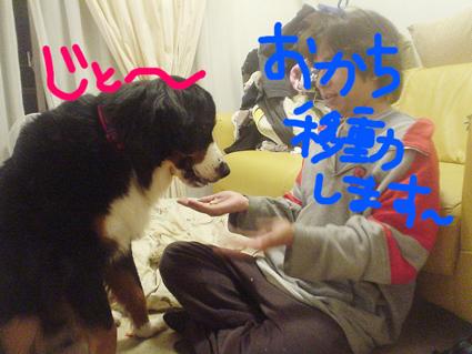 idouokachi.jpg