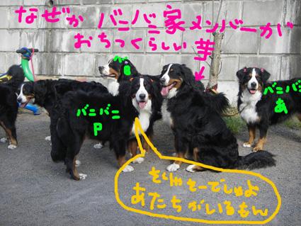 ochitsuki.jpg