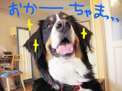 oka-cyama.jpg