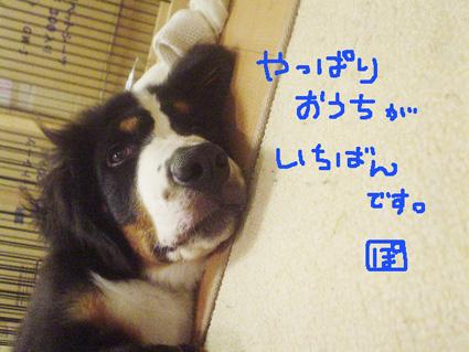 ouchi1.jpg
