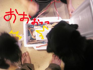 warawara2.jpg