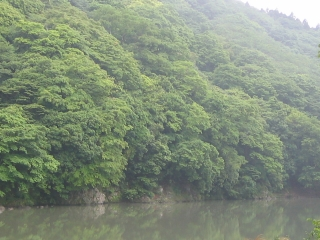 asanoooigawa
