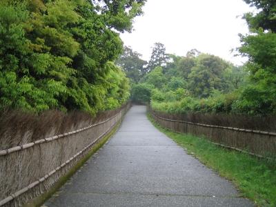 arashimayakouen