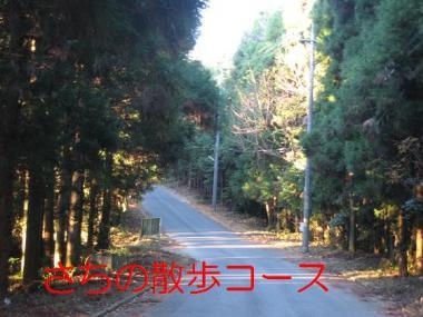 20061211163041.jpg