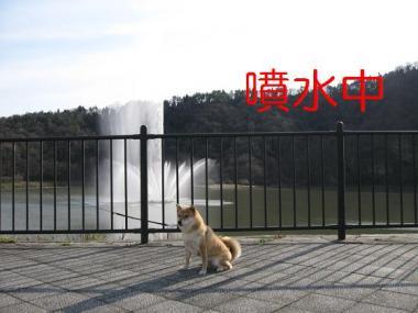 20070103221621.jpg