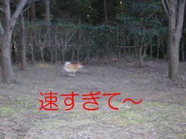 20070120150323.jpg