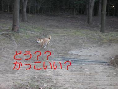 20070120150517.jpg