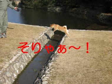 20070201160648.jpg