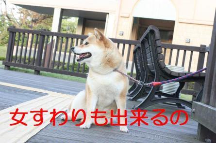 20070525145802.jpg