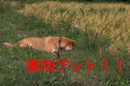 20071013104132.jpg