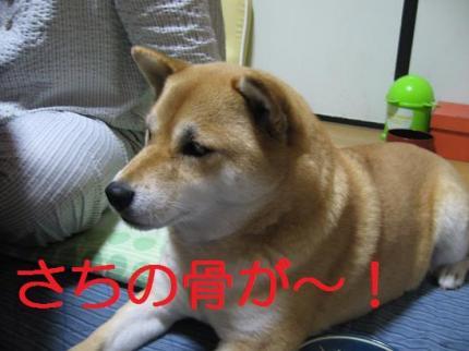 20071112135744.jpg