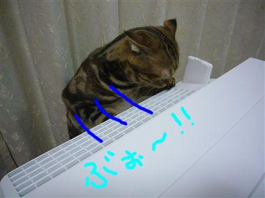 P1040341_R.jpg