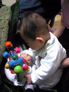 おもちゃに集中