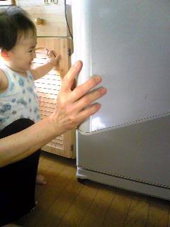 冷蔵庫チェック:2