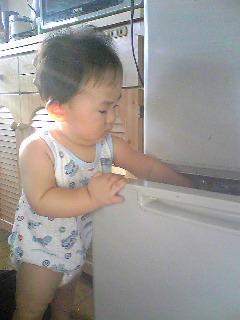 冷蔵庫チェッ:1
