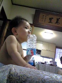 ペットボトルは後ろをなめるのがいいよね。
