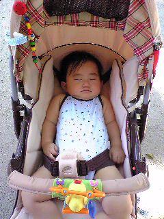 ベビーカーで熟睡:1歳