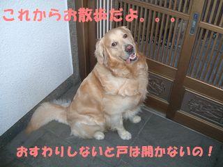 20070620225600.jpg