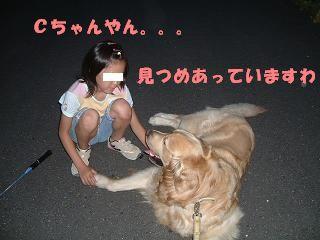 20070620230447.jpg