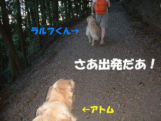 20070815181355.jpg