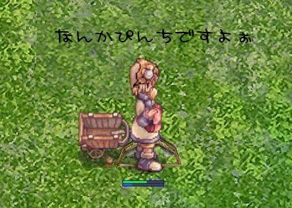 goma_saya_004.jpg