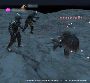 2006010702.jpg