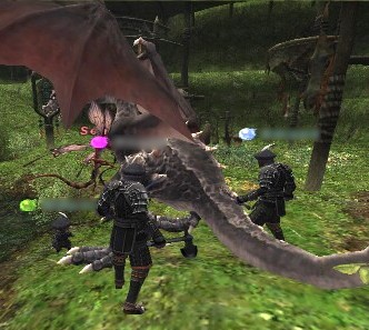 2007011302.jpg