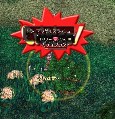 1024_9C1D-2.jpg