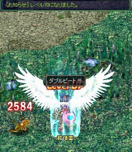 20060918091916.jpg