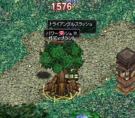 20061025022321.jpg