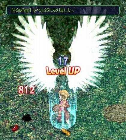 20061027195045.jpg