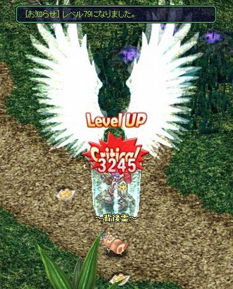 20061112153304.jpg