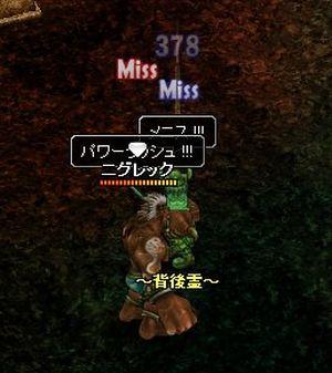 20061224165144.jpg