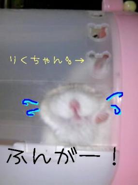 20071012023256.jpg