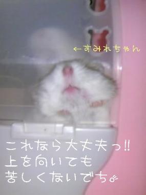 20071013054908.jpg