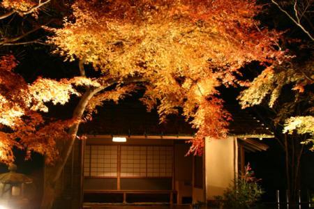 下野・竹風園